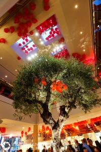 Impressionen der Neueröffnung von Vapiano in Fürth am 20. Mai 2015